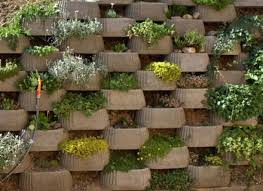 Garden Wall Decoration Ideas Garden Wall Ideas Design Smartledtv Info