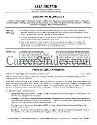 Managing Director Resume Example by Download It Director Resume Haadyaooverbayresort Com
