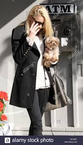amber heard leaves a nail salon in hollywood carrying her pet