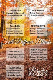 best 25 fall essential oils ideas on pinterest aromatherapy