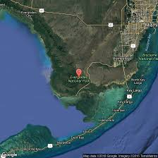Florida Everglades Map by Animals In Everglades National Park Usa Today