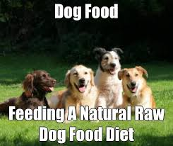 14 best raw natural diet for dogs images on pinterest diet dog