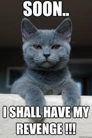 Revenge Memes - soon i shall have my revenge revenge cat quickmeme