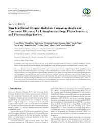 comparatif si鑒es auto two traditional medicines curcumae radix and curcumae