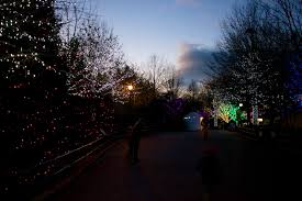 Washington Dc Zoo Lights by Smithsonian National Zoological Park
