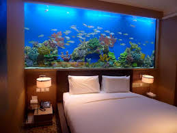 Aquarium Bed Set Bed