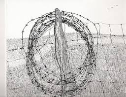 barbed wire fence drawings fine art america