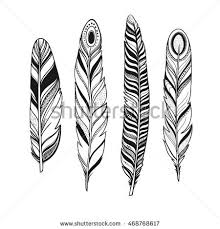 set colorful birds feathers isolated on stock vector 479754670