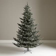 195gbp buy lewis collection silver forest spruce