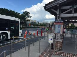 black friday disney world tickets disney world transportation information disney bus schedules