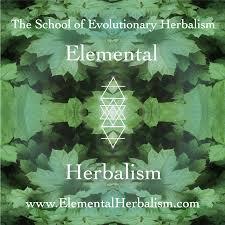 Home Evolutionary Healthcare Of Evolutionary Herbalism