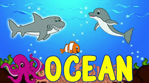 ocean animals for kids sea animal songs for children learning