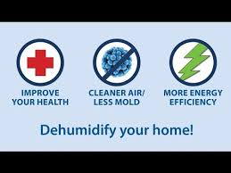 Cheap Dehumidifier For Basement by The Right Dehumidifier For Your Damp Basement Good Day