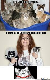 Funny Cat Lady Memes - the cat lady inside me has spoken by nowna meme center