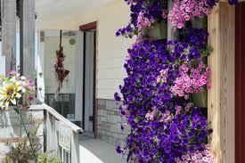Flower Shop Troy Mi - new living wall added to wasserman u0027s flowers u0026 gifts of muskegon