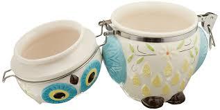 amazon com boston warehouse hinged jar with floral owl design amazon com boston warehouse hinged jar with floral owl design kitchen dining