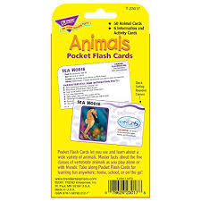 animals pocket flash cards toys