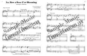 medley magic volume 2 music by chrissy ricker hardcopy