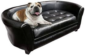 good dog couch bed 76 in sofa room ideas with dog couch bed