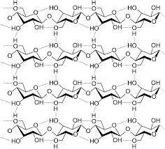 cellulose wikipedia
