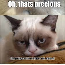 Colonel Meow Memes - rmx colonel meow is not amused by 0ceans11 meme center