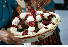 indian wedding garlands indian wedding and garlands stock photos indian wedding and