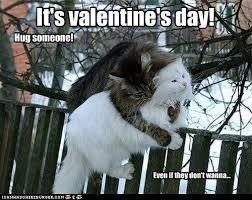 Valentine Day Meme - 17 valentine s day memes that will have you loving valentines day