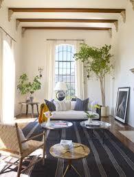 living beams carpet chair sofas pillows table plants spanish