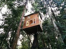 895 best tree houses miradors tours images on pinterest
