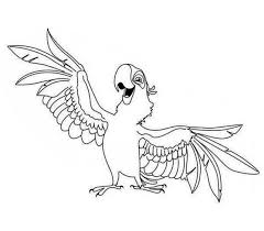 parrot rio coloring coloring pages