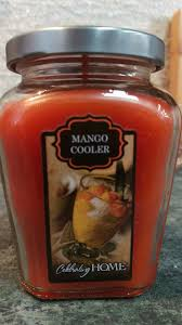 home interior mango cooler candles home interiors