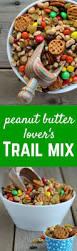 Halloween Snack Mix Recipes Top 25 Best Trail Mix Kids Ideas On Pinterest Kids Snack Mix