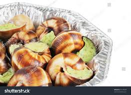 cuisine bourgogne bourgogne snails garlic butter cuisine stock photo 76144540
