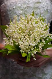 best 25 lily of the valley wedding bouquet ideas on pinterest