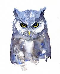 owl watercolor front view hiking artist basecamp art