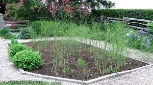 raised vegetable garden layout 4x8 raised veggie garden beds