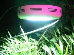 ufo led grow light ufo led grow light 50w