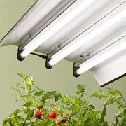 pack of 6 f54t5 865 ho 54 watt t5 high output daylight bulbs