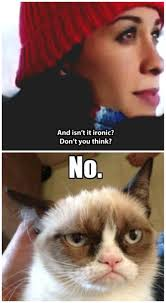 Ironically Liking Memes - grumpy cat understands irony fun pinterest grumpy cat cat