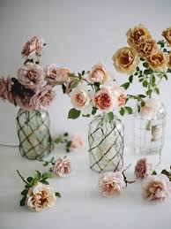 blooms in season fall roses sacramento street
