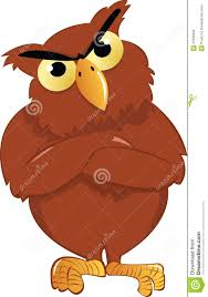 angry owl stock photography image 27090902