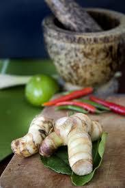 galangal cuisine galangal root
