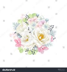 decorative round ornament flowers roses white stock vector