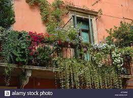 italy verona balcony garden in historic town center stock photo