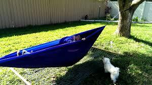 one hammock two people youtube