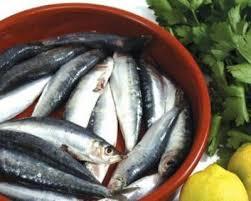 pesci alimentazione il pesce azzurro nell alimentazione dei bambini va introdotto dai