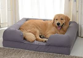 top 10 best dog sofas u0026 chairs in 2018 reviews