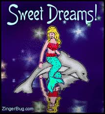 Sweet Dreams Meme - sweet dreams mermaid dolphin glitter graphic glitter graphic