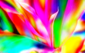 colorable wallpaper wallpapersafari