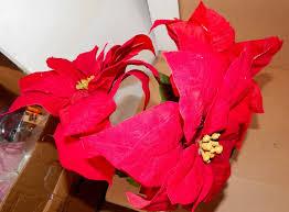 ashland flowers ashland fall hollween christmas decor stems velvet flowers